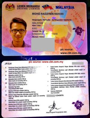 Malaysians get new driver's licence pictures what's the difference